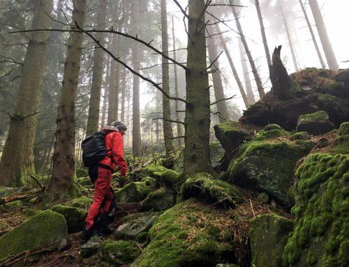 Der Albtal.Abenteuer.Track