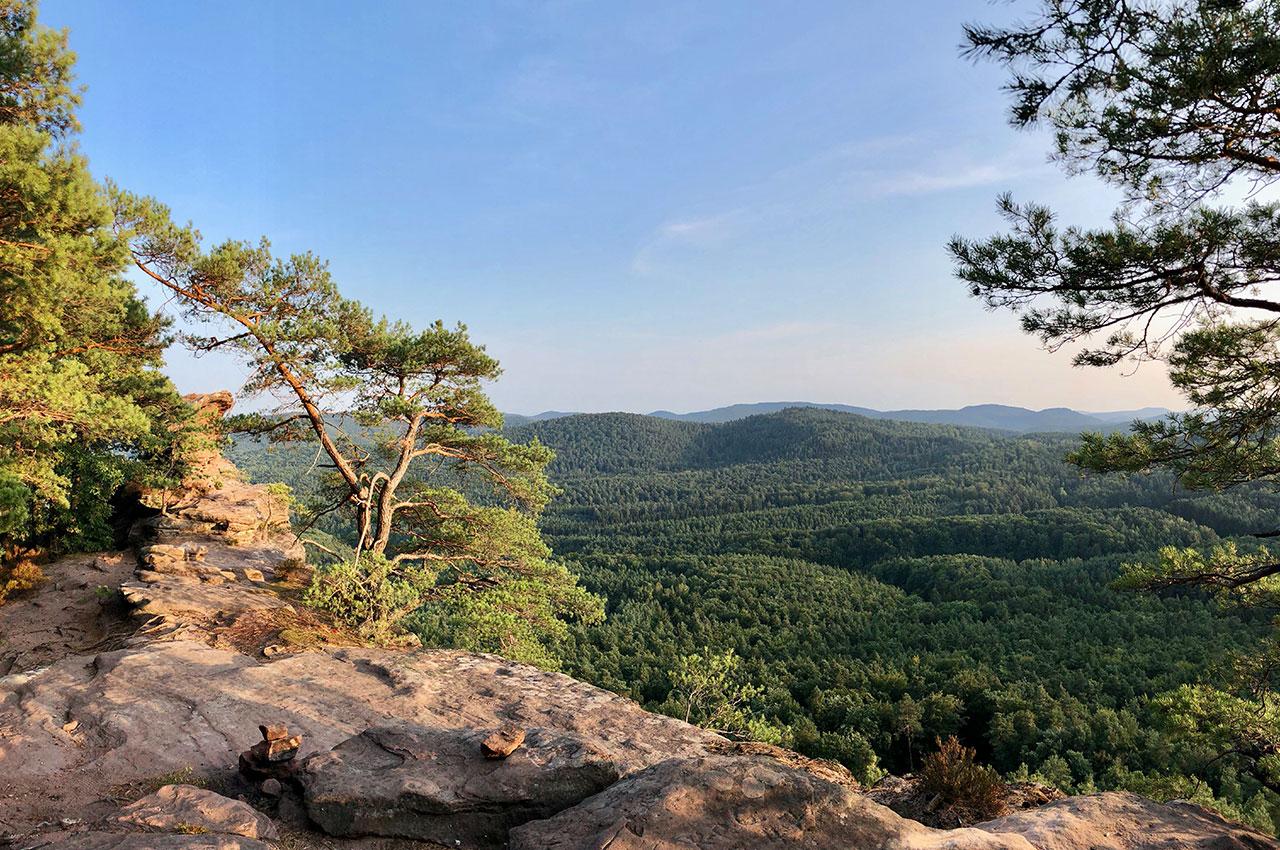 Fernblick auf die Pfälzer Berge