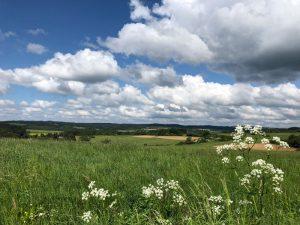 Von einer Anhöhe aus hatte ich eine schöne Sicht auf die Wiesen rund um Wollmerath.