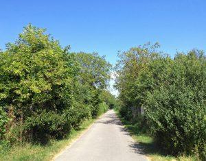 Asphaltierter Weg