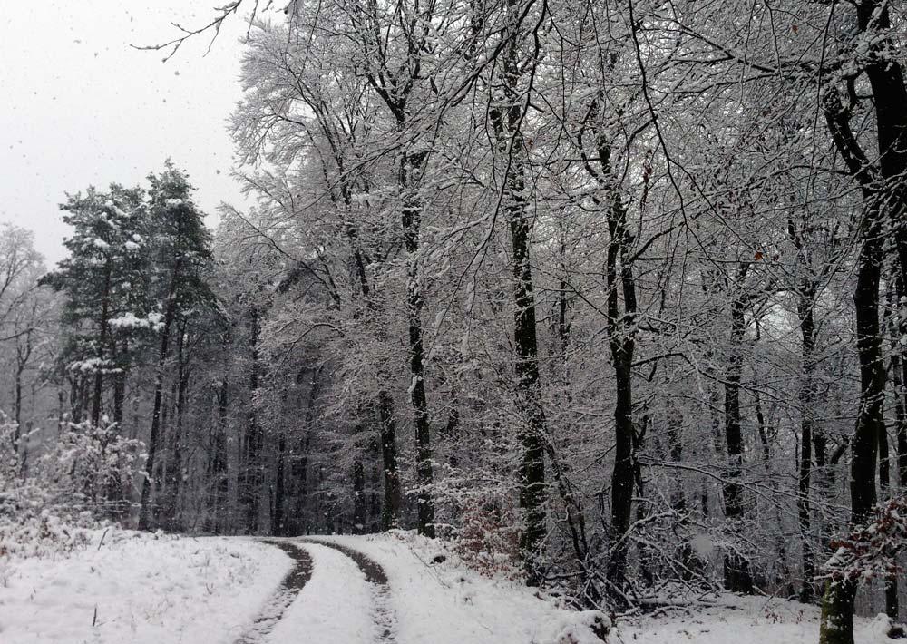 Pilgern im Schnee