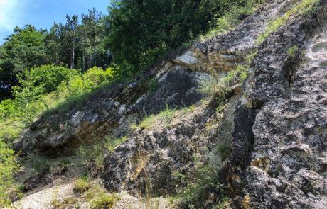Kraterrand im Geotop Kalvarienberg bei Gosheim