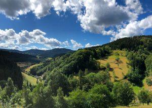 Schwarzwaldsteig – Weg der schönen Aussichten