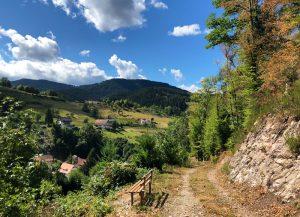 Wandern auf dem Schwarzwaldsteig