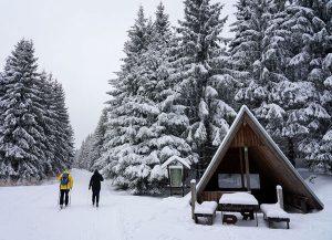 Schutzhütte am Stein 16