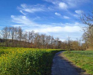 Weg nach Mühlhausen